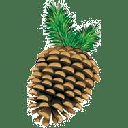 pinecone-favicon