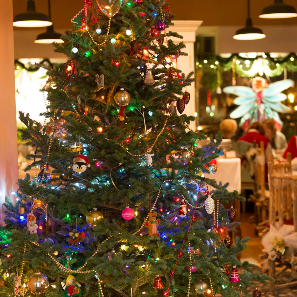 In Poland, Christmas Eve is a very important night for gathering with family, decorating, and remembering lost loved ones. Traditionally called Wigilia ...